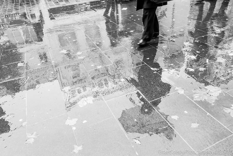 Wet pavement.jpg