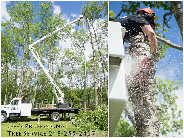 Jeff's Professional Tree Service