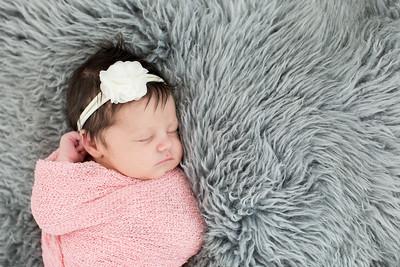 Newborn Family Studio Portraits in La Jolla - Lucy September 2018