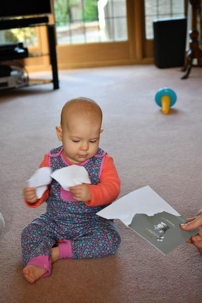 Daisy babysitting Sept 2017 007.JPG