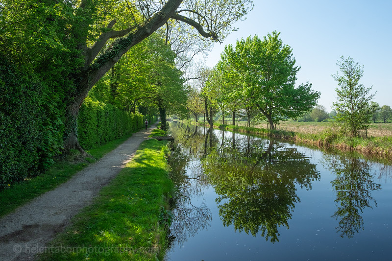 Ripon canal 7 May 18-45.jpg