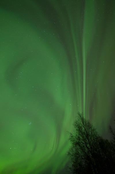 Aurora Borealis V