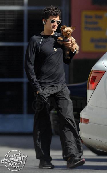 Orlando Bloom + Puppy = Adorable