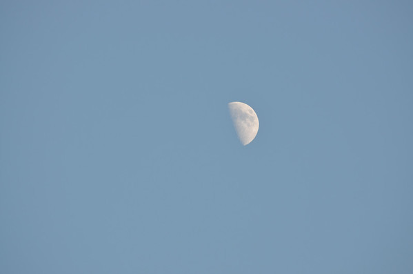 2012-01-01 Moon Pictures