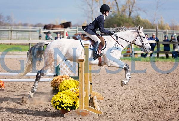Equestrian (Photos by Annalee Bainnson)