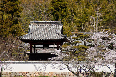 Kokubunji, Okayama - April 8, 2010