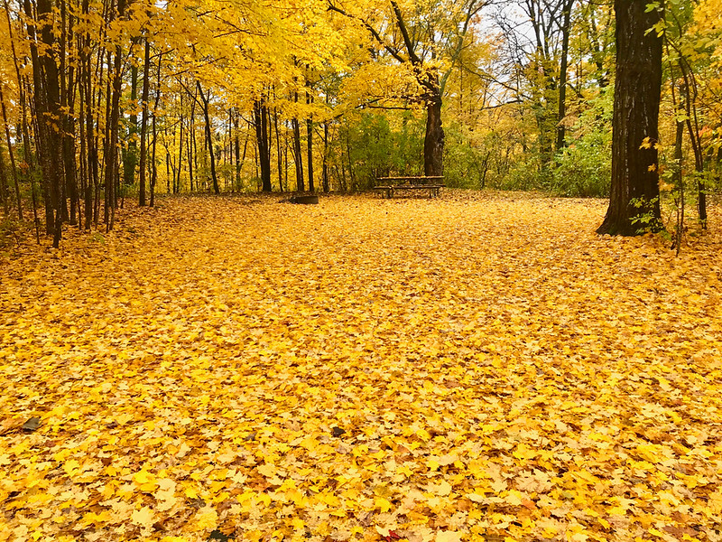 Glen Hills County Park