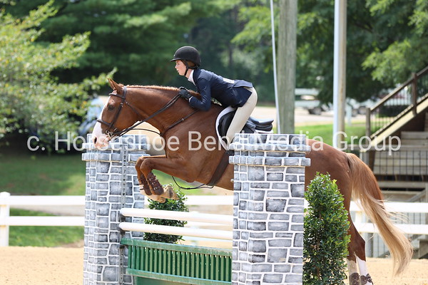 2019 Lexington National Horse Show -- Friday -- Wiley
