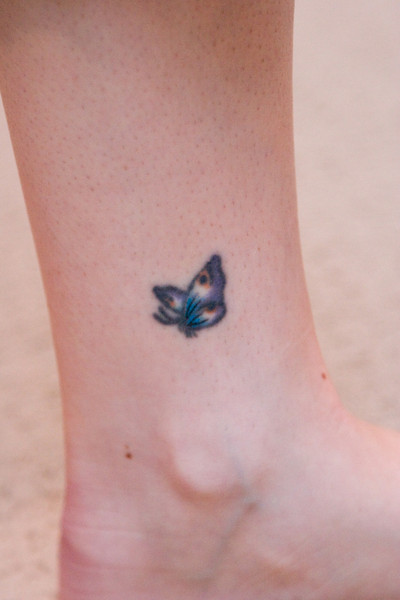 12 year-old butterfly, touched up.
