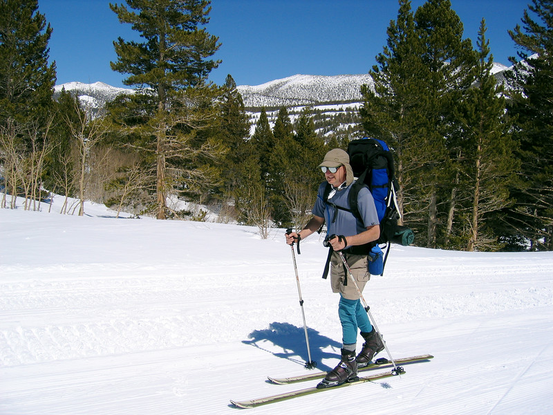 Skier Lawrence.jpg