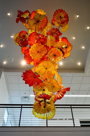 RSRCA Chihuly