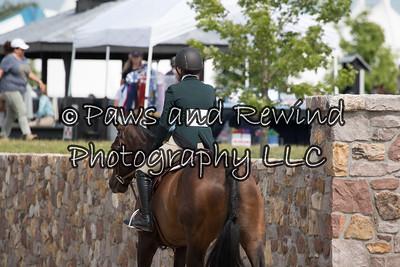 $1,000 Furlong's Healthy Horse Low Hunter Derby