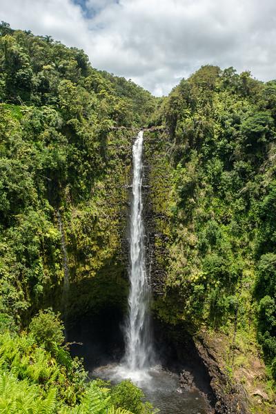 Hawaii2019-160.jpg