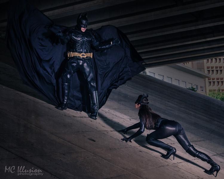 Ivy Tom Catwoman Batman_9799a1.jpg