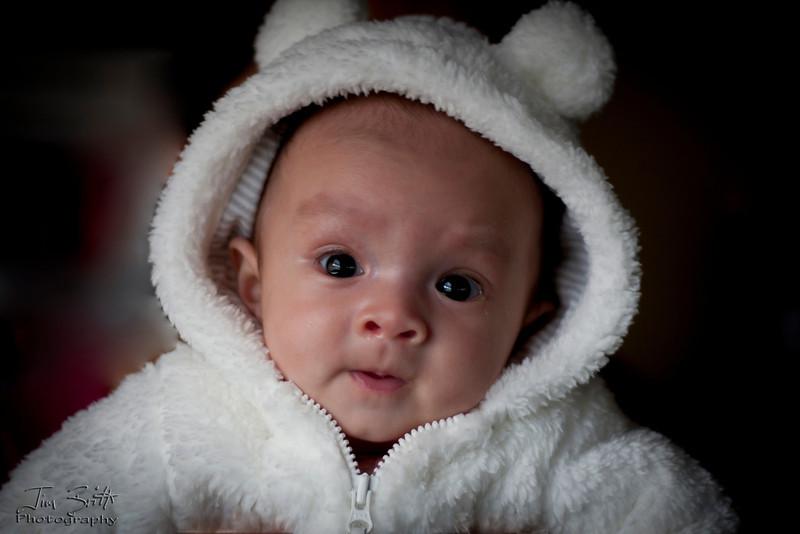 Addison-Lamb.jpg