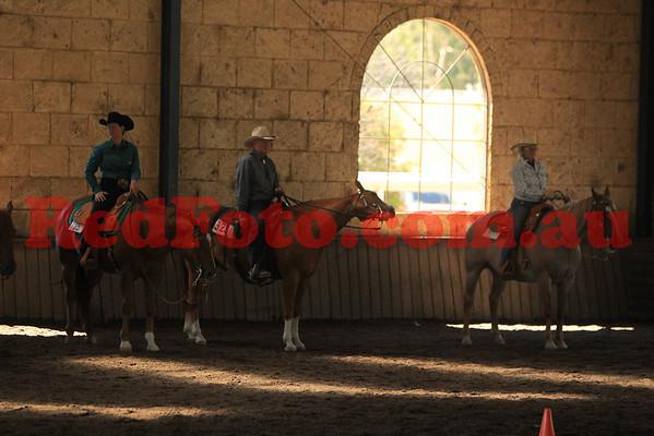2014 02 08 WAQHA Versatility Futurities Ranch Classes