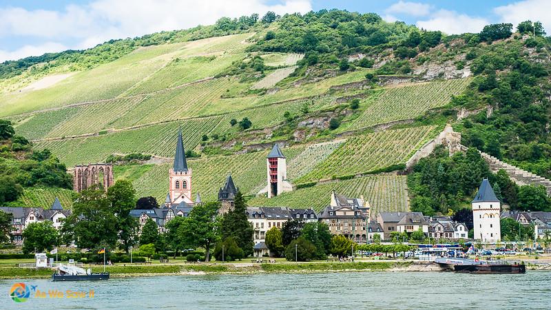 Rhine-Cruising-2015-00670.jpg