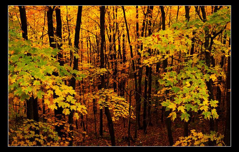 2703-2705_Vermont.jpg