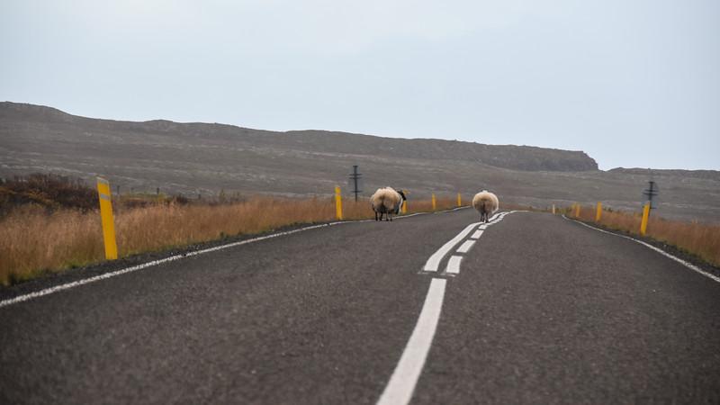Iceland_2015_10_07_17_45_21.jpg