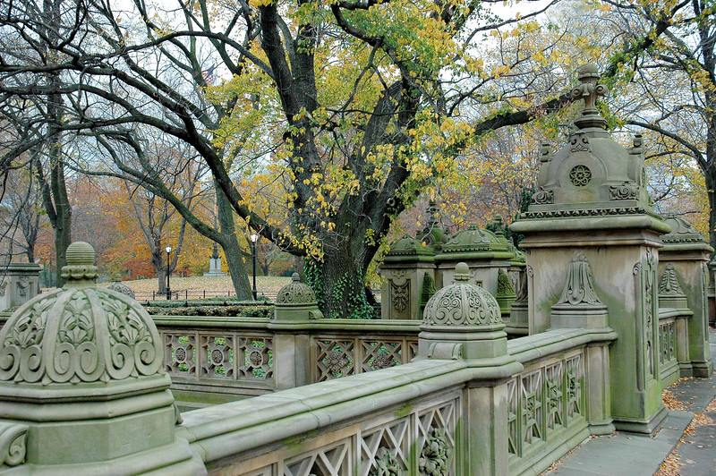 Central Park Fence