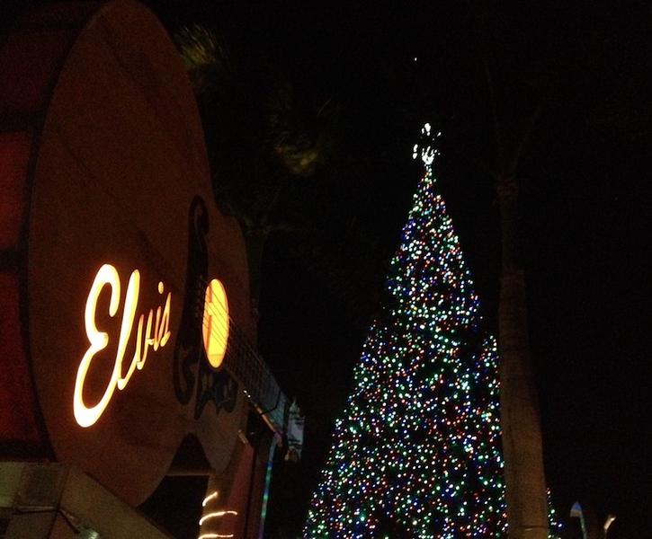 Delray Christmas 2013