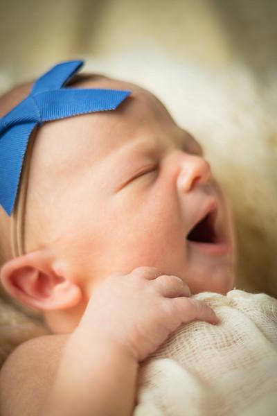 Baby Elle 1-16.JPG