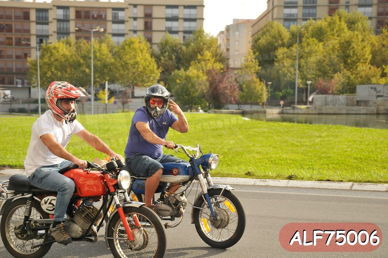 ALF75006.jpg