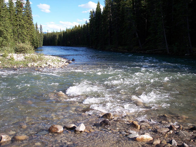 """A river runs """"behind it""""....the sounds lulled you to sleep."""