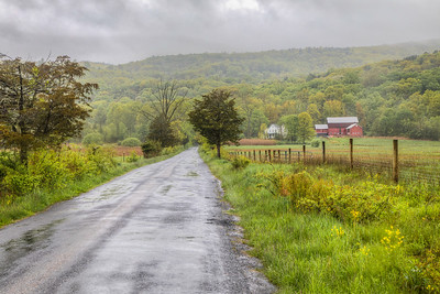 Pine Road, New Paltz, New York