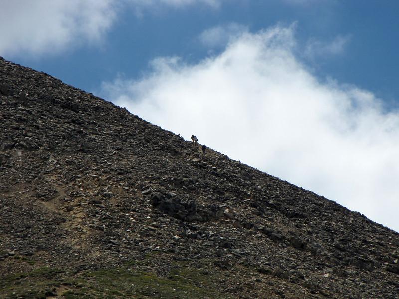 Mt Elbert 7-17-2010 (117).jpg