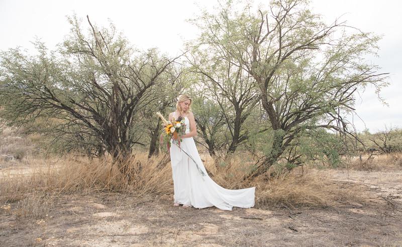 Nick and Charlotte Nelson Wedding-3400.jpg
