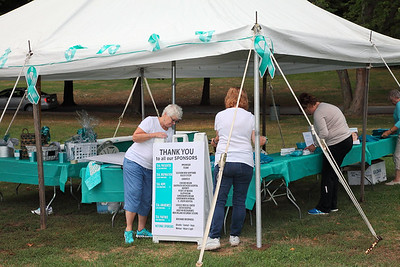 National Ovarian Cancer Coalition 2016 Run Walk