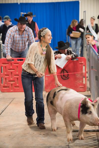 Hays County Show-0434.jpg