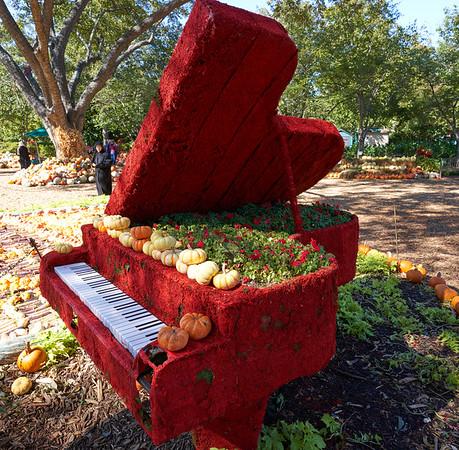 Dallas Arboretum - October 2019