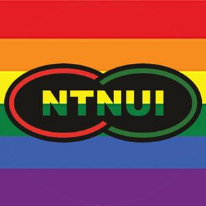 NTNUI Logoer