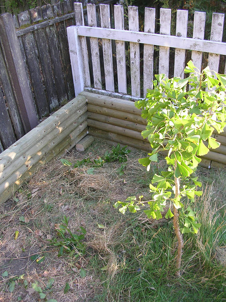 Build a retaining wall in 6 hours