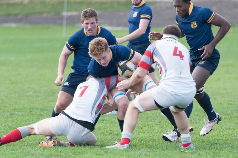 2015 Michigan Rugby vs. Ohio State -228.jpg