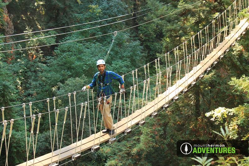 redwood_bridge_1473461528474.jpg