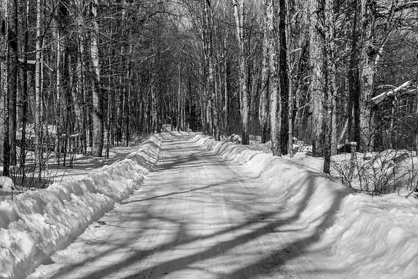 UVLT Annual Bear Pond Snowshoe Hike