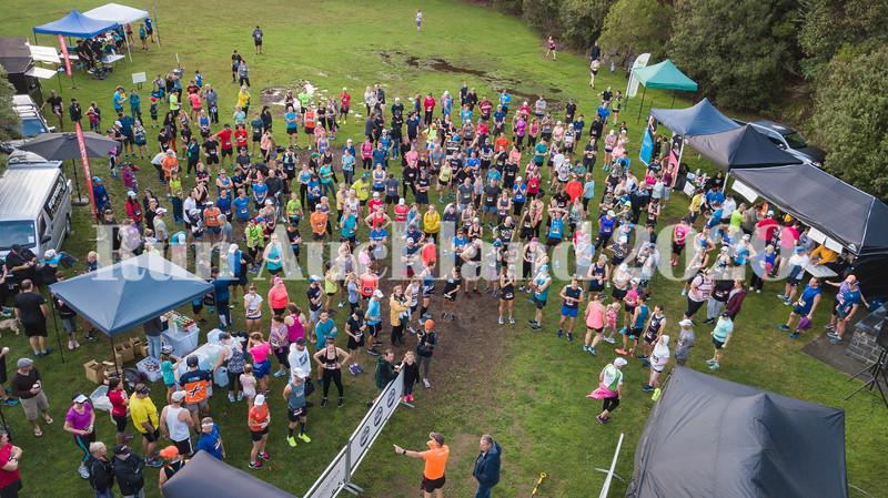 Run Auckland 2019