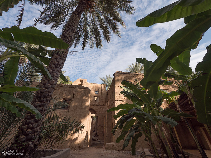P1211192Al Hamra- Oman.jpg