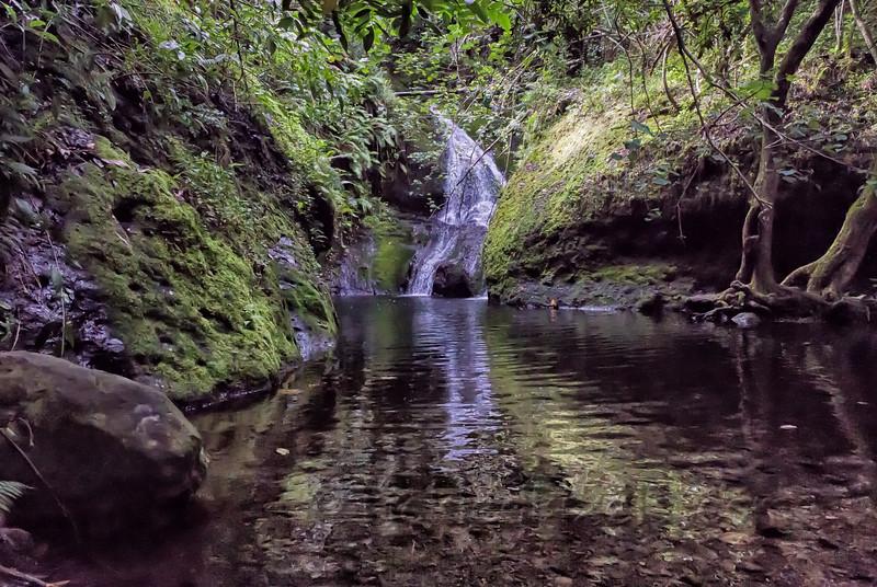 Papua Waterfall