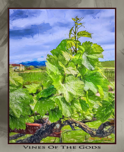 All About Wine Art