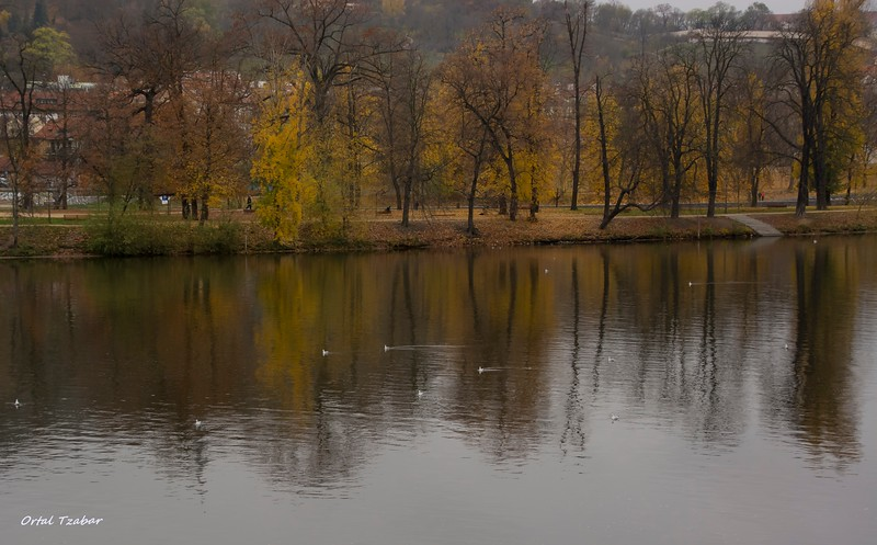 נהר הוולטובה 3.jpg