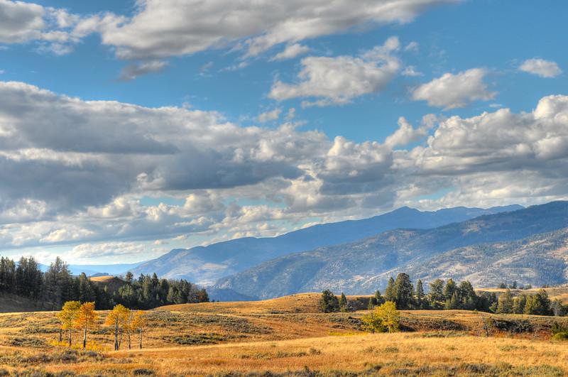 Yellowstone National Park.