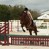 Horse and Rider Jump at a Competition-2