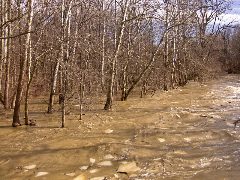 Black river flood 021811.jpg