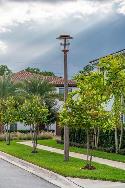 Spring City - Florida - 2019-156.jpg