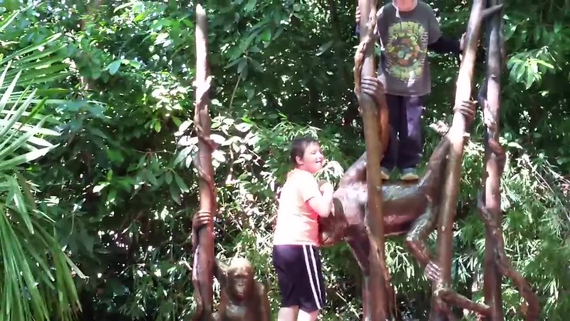 Woodland Park Zoo 2016_7.mp4