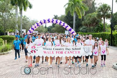 2015 MCDS Cancer Walk